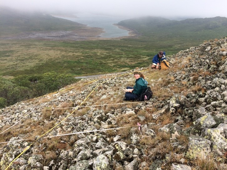 Surveying basalt outcrops for rare and endangered species