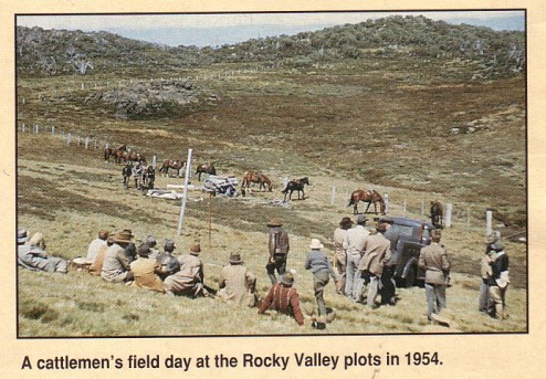 Original fence at Maisie's Rocky Valley Plot in 1954