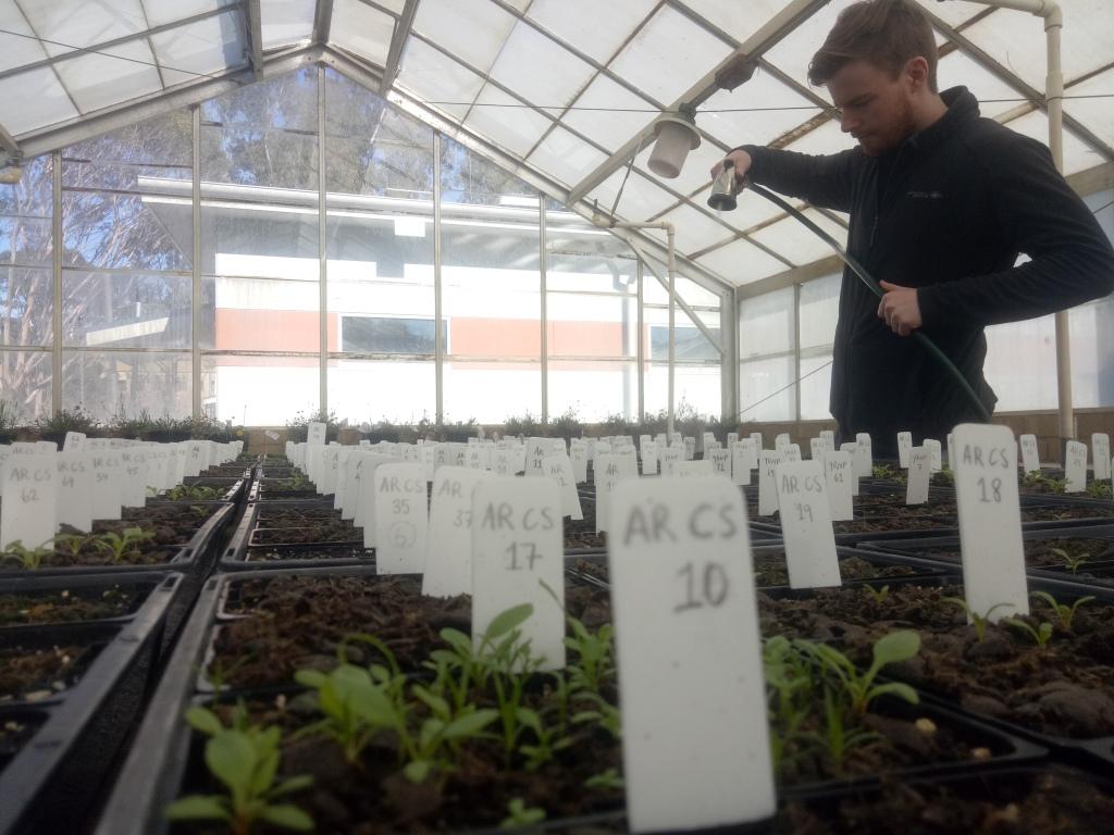 Matt Quin and plants germinating from deer pellets