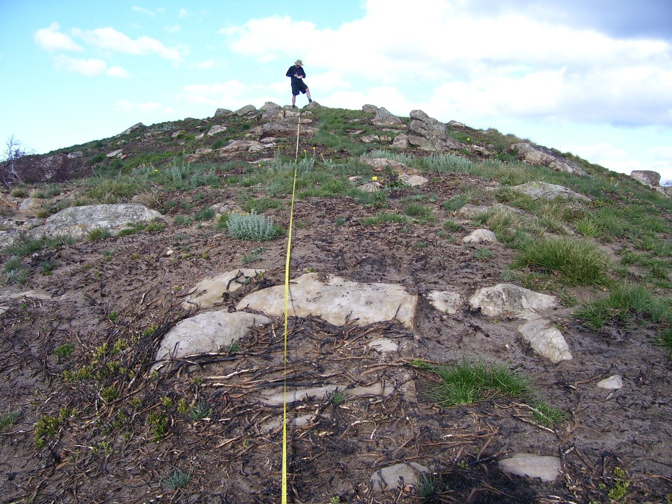Mt Magdala Summit Survey